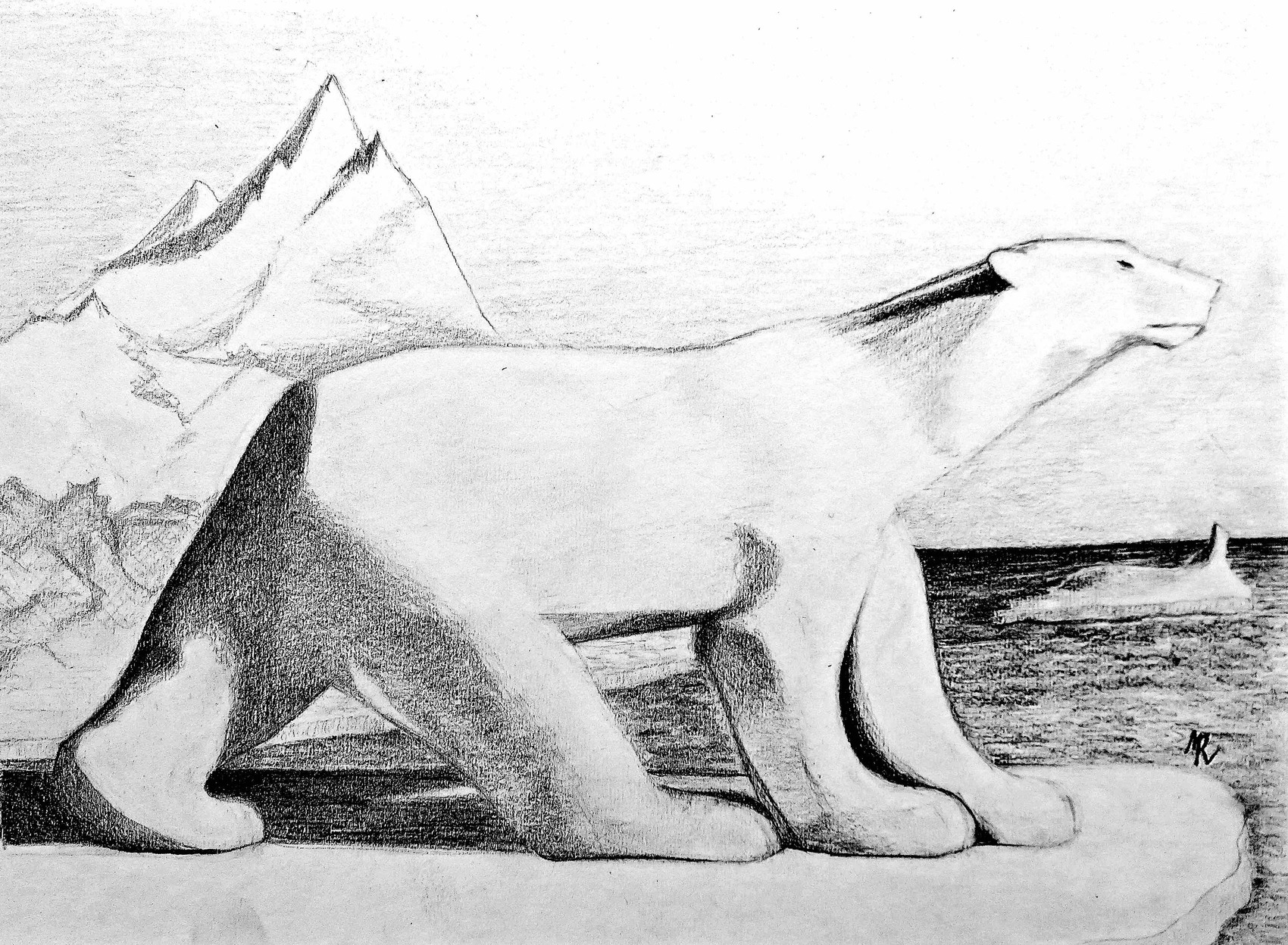 Dessin Ours Blanc Sur La Banquise Drawing A Polar Bear On The Ice Floe