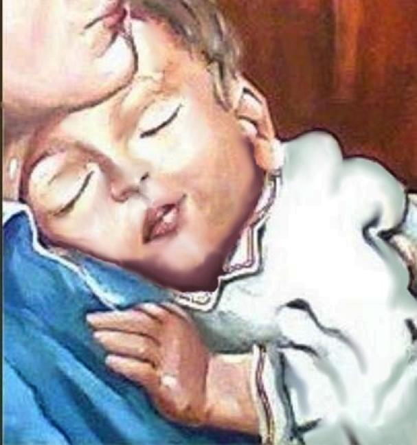 maternité-reproduction-détail