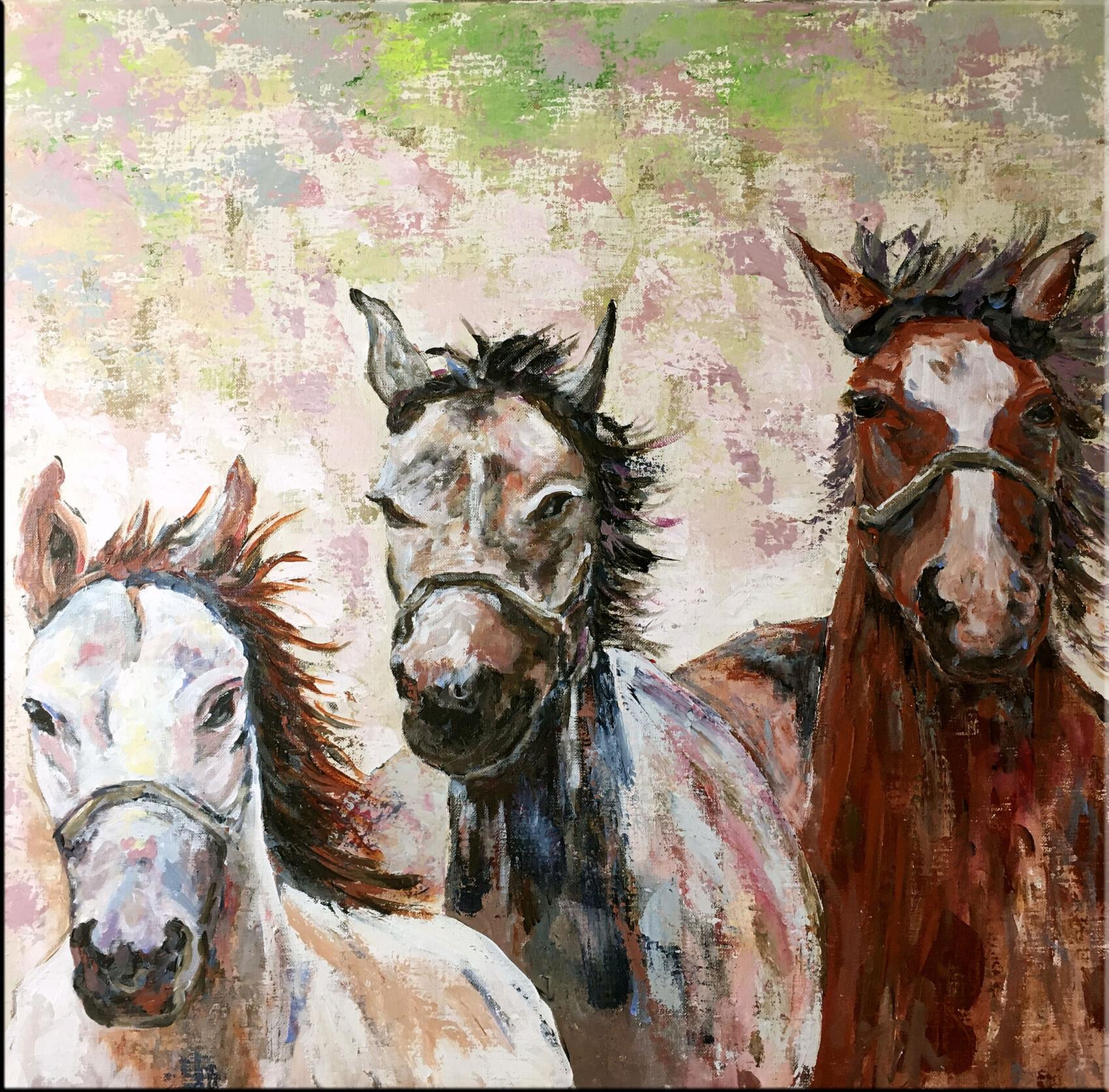 3 chevaux