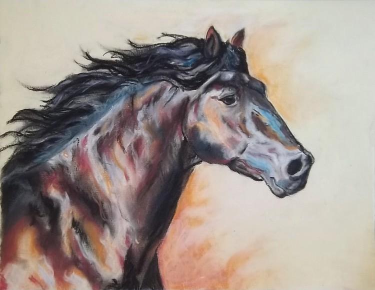 Dessin etude petit galop ii - Comment dessiner un cheval au galop ...