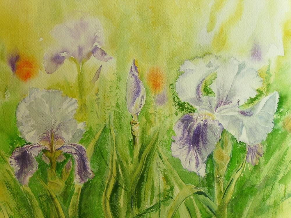 Peinture les iris de mon jardin for Derriere les murs de mon jardin