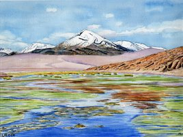 2019-11 Chili Atacama Altiplano