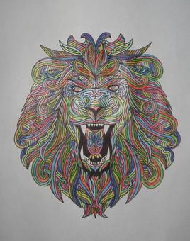 Lion 6