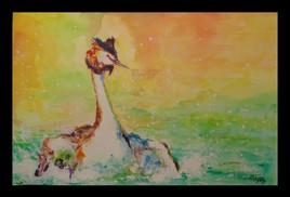 Peinture le bain du grèbe