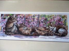 La sieste des chats