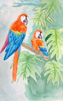 Les perroquets