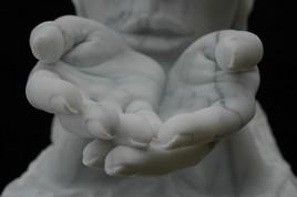 siddharta detail main2