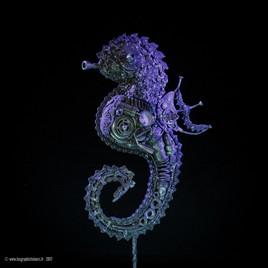 Hippocampe  3