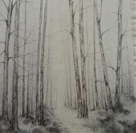 Forêt 16