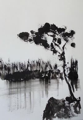 Gwezenn 6 (arbre6)