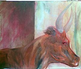 tête de taureau camargue orange