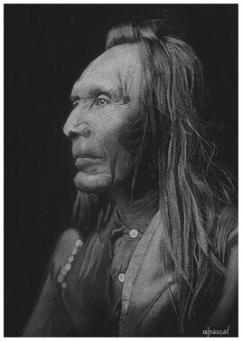 Indien Nez Percé
