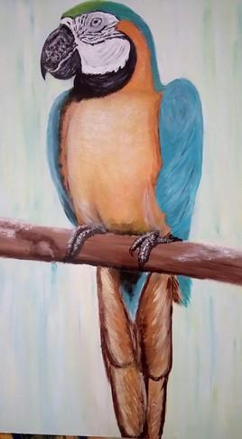 Madame perroquet