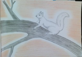 L'ecureuil