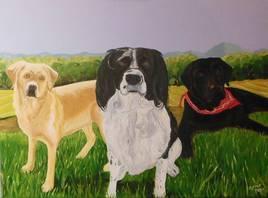 3 chiens