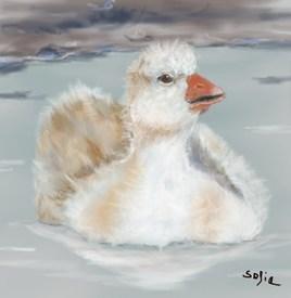 La Petite Oie Blanche ....