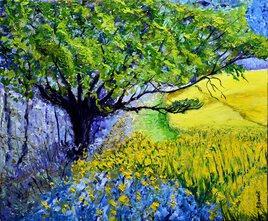A l'ombre des colzas en fleurs