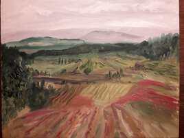paysage, vignes et montagne Sainte Victoire