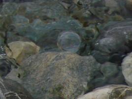Ode aux bulles de savon, à la joie éphémère, à notre âme d'enfant