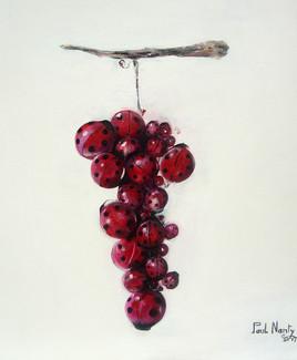 grappe de raisins coccinelles