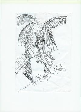 Palmier à Chamarelle