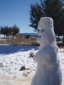 Bonhomme de neige