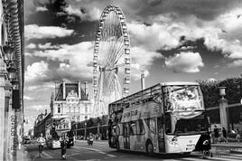Manège : Paris au mois d'août
