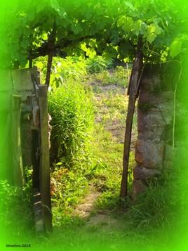 la porte du paradis..