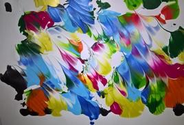 féerie des couleurs