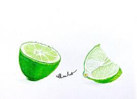Peinture Le citron vert coupé / Painting A cut lime