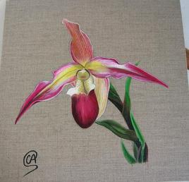 Orchidée - Peinture acrylique