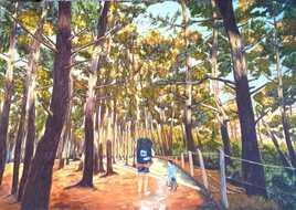 Promenade en forêt de Biscarrosse