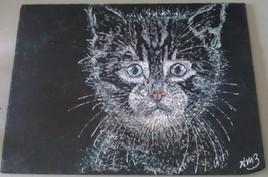 Le chaton  triste