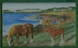 chevaux  bretons