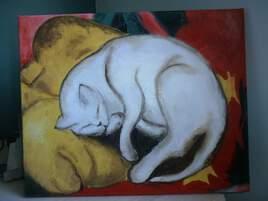 Chat sur le coussin jaune