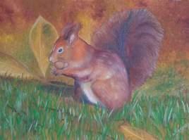 La gourmandise de l'écureuil