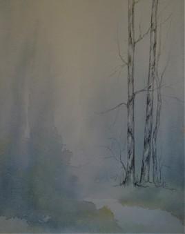 Sous-bois dans la brume