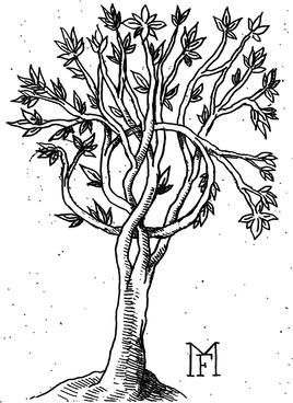 L' arbre