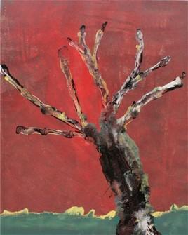 ombre de l'arbre