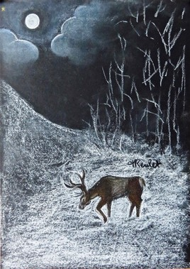 Cerf dans une forêt enneigée / Drawing A deer in a snowy clearing