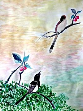 Peinture La pie (Pica pica) et son petit / Painting A magpie and its young