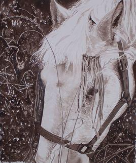 le cheval d'Audrey
