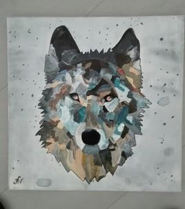 Loup aux yeux cuivrés