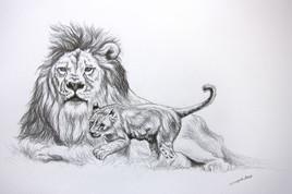 Dessin de Lion Lionceau