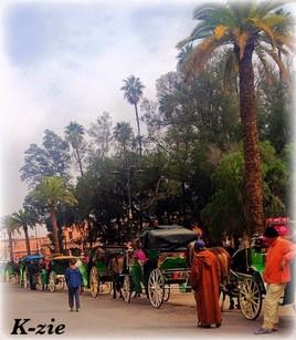 Aller des calèches (Maroc Marrakech)