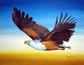 L'aigle pécheur africain
