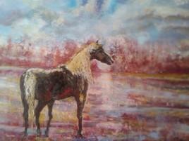 cheval d' automne