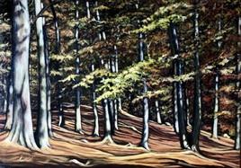 Forêt de St Cloud