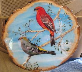 Oiseaux des boisées