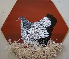 La poule Wyandotte